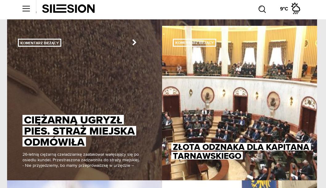ciezarna_ugryzl_pies