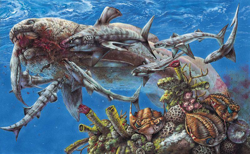 Devon-ryby-179