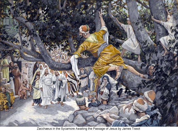 James_Tissot_Zacchaeus_in_the_Sycamore_Awaiting_the_Passage_of_Jesus_700