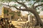 (Joz 24,14-29) Jozue zgromadził wszystkie pokolenia Izraela w Sychem. Wtedy przemówił do całego narodu: Bójcie się więc Pana i służcie Mu w szczerości i prawdzie! Usuńcie bóstwa, którym służyli […]