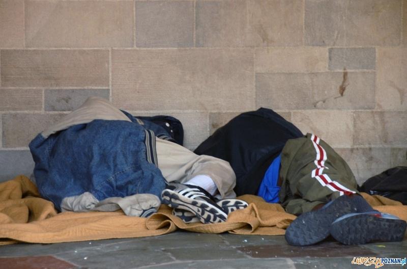 bezdomni