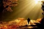 Myśl dnia Małżeństwo to diament szlifowany całe życie. Antoni Regulski ŚRODA XXXI TYGODNIA ZWYKŁEGO, ROK IIPIERWSZE CZYTANIE (Flp 2,12-18) Zabiegajcie o własne zbawienie Czytanie z Listu świętego Pawła Apostoła do […]