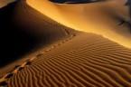 Milczenie jest sposobem działania Boga, który wytycza człowiekowi drogi do przejścia. Jest ono czymś zupełnie różnym od milczenia naturalnego, czyli przestrzeni ciszy wolnej od jakichkolwiek dźwięków, jak również od milczenia […]