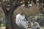 (Ml 3,19-20a) Oto nadchodzi dzień palący jak piec, a wszyscy pyszni i wszyscy wyrządzający krzywdę będą słomą, więc spali ich ten nadchodzący dzień, mówi Pan Zastępów, tak że nie […]
