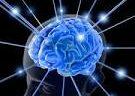 Przeglądając newsy w prasie naukowej i opracowaniach związanych z CS (cognitive science – nauka o umyśle) daje się zauważyć zintensyfikowanie badań mających na celu wyjaśnienie mózgowej struktury i architektury […]
