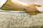 Myśl dnia Z czystego serca rodzi się owoc dobrego życia. św. Tomasz z Akwinu  Środa, 28 stycznia 2015 –Wspomnienie obowiązkowe św. Tomasza z Akwinu, prezbitera i doktora Kościoła  […]
