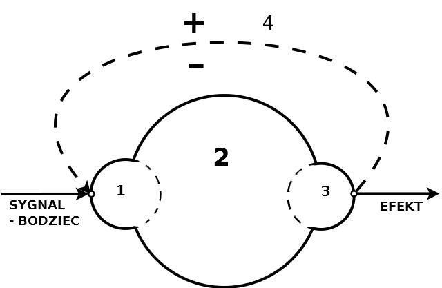 system / złożoność