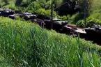 UKRAINA, Bloki mieszkalne, Avdeevka (Ukraińska strona), Donbas w piątek. Dwa ujęcia: https://www.youtube.com/watch?v=p8GWuZzsWE8 (kamera przemysłowa)https://www.youtube.com/watch?t=348&v=K0OgfAxvbl4 (komórka, odgłosy rozmowy i śmiech wskazujące, że dla mieszkańców ostrzał to codzienność). Dzisiejszy lub wczorajszy tranport […]